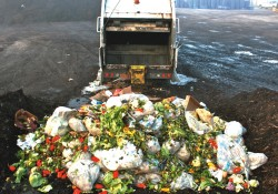 Adoption à l'unanimité par le Sénat de la loi socialiste de lutte contre le gaspillage alimentaire