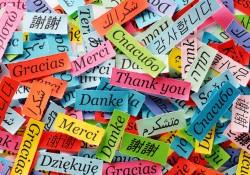 L'enseignement des langues, notamment de l'allemand – table ronde à la commission de la culture du Sénat